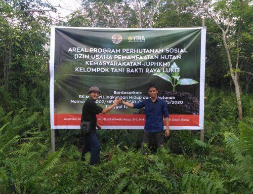 Dr. Intsiawati Ayus SH MH Kebut Perhutanan Sosial di Riau, Kini Masyarakat Meranti Bisa Nikmati Hasil Hutan